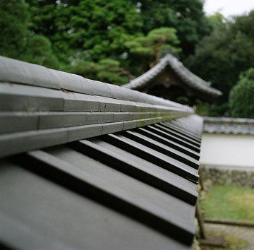 20081108_11