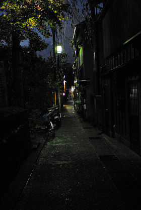 20081124_61